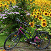 Summer Cycling Poster by Debra and Dave Vanderlaan