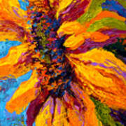 Sunflower Solo II Poster by Marion Rose
