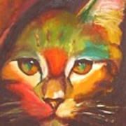 Sunkist Poster by Susan A Becker