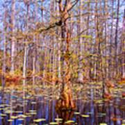 Swamp Tree Poster by Susanne Van Hulst