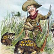 T. Roosevelt Cartoon, 1909 Poster by Granger