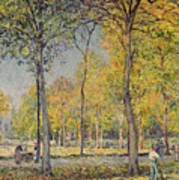 The Bois De Boulogne Poster by Alfred Sisley