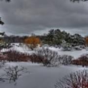 The Garden In Winter Poster by David Bearden