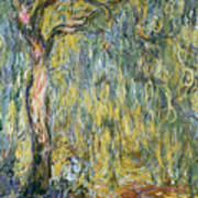 The Large Willow At Giverny Poster by Claude Monet