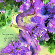 The Vine Poster by Anne Duke