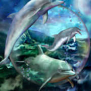 Three Dolphins Poster by Carol Cavalaris