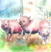 Three Little Pigs Poster by Arline Wagner