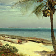 Tropical Coast Poster by Albert Bierstadt