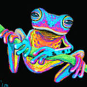 Tropical Rainbow Frog On A Vine Poster by Nick Gustafson
