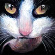 Tuxedo Cat With Mouse Poster by Svetlana Novikova