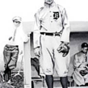 Ty Cobb Poster by Ferrel Cordle