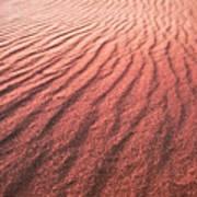 Utah Coral Pink Sand Dunes Poster by Ryan Kelly