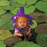 Waterlily Poster by Anne Geddes