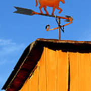 Weathervane Poster by Robert Lacy