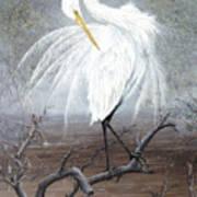 White Egret Poster by Kevin Brant