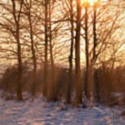 Winter Break Poster by Wim Lanclus
