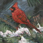 Winter Cardinal Poster by Nadine Rippelmeyer