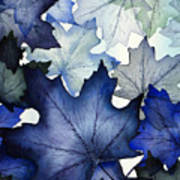 Winter Maple Leaves Poster by Christina Meeusen