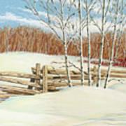 Winter Poplars 2 Poster by Richard De Wolfe