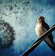 Wishing Swallow Poster by Nancy  Coelho