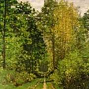 Wooded Path Poster by Claude Monet