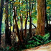 Woodland Trail Poster by Michelle Calkins