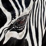 Zebra Eye Poster by Ilse Kleyn