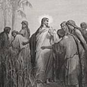 Jesus And His Disciples In The Corn Field Print by Gustave Dore