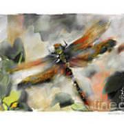 Dragonfly Garden Print by Bob Salo