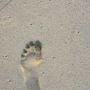 Footprint In Sand On Beach Print by Sami Sarkis