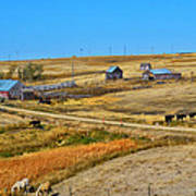 Home On The Range Print by Kelly Reber