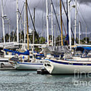 In The Harbor Print by Cheryl Young