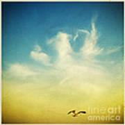 Lonely Seagull Print by Setsiri Silapasuwanchai
