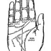 Palmistry Chart, 1885 Print by Granger