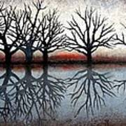 Reflecting Trees Print by Janet King