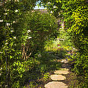 Summer Garden And Path Print by Elena Elisseeva