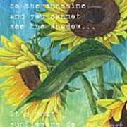 Vince's Sunflowers 1 Print by Debbie DeWitt