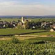 Vineyard And Village Of Pommard. Cote D'or. Route Des Grands Crus. Burgundy. France. Europe Print by Bernard Jaubert