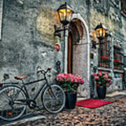 Vintage Bicycle Print by Dobromir Dobrinov