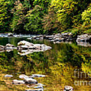 Williams River Autumn Print by Thomas R Fletcher
