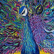 Peacock Print by Willson Lau