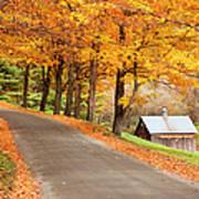 Autumn Road Print by Brian Jannsen