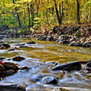 Autumn Stream Print by Frozen in Time Fine Art Photography