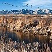 Great Salt Lake Utah Print by Utah Images