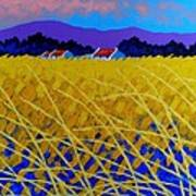 Yellow Meadow Print by John  Nolan