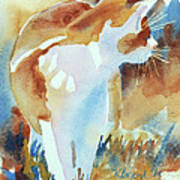 2004 Cat On The Prowl  I  Print by Kathy Braud
