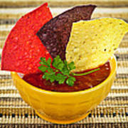 Tortilla Chips And Salsa Print by Elena Elisseeva
