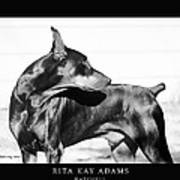 Watchful Print by Rita Kay Adams