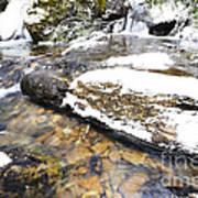 White Oak Run In Winter Print by Thomas R Fletcher