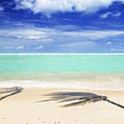 Tropical Beach Print by Elena Elisseeva